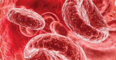 Причины снижения гемоглобина в крови у женщин