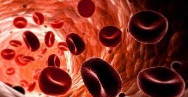 Норма эритроцитов у ребенка в крови, причины отклонений