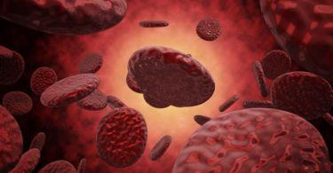 Креатинин в биохимическом анализе крови: повышен, за что отвечает