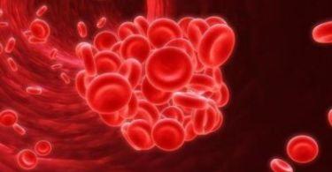 Как обозначается гемоглобин в общем анализе крови