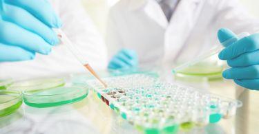 Расшифровка и нормы показателей биохимического анализа крови: что это за исследование