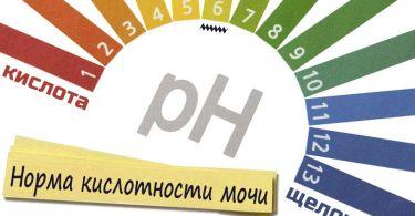 Анализ мочи: что значит кислая и щелочная реакция, причины и лечение
