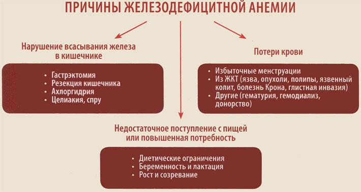 Причины появления железодефицитной анемии