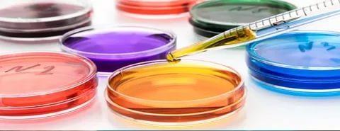 Анализы в чашках петри