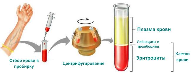 Способ определения гематокрита