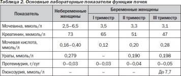Таблица с нормами белка в моче при беременности