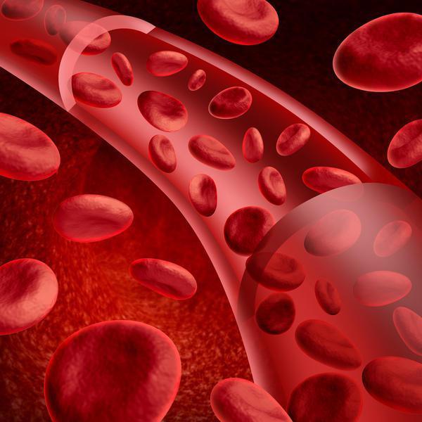 Сосуд с кровью в разрезе
