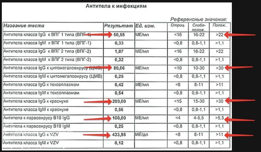 Анализ крови на обнаружение антител медицинская справка для гаи на м авиа