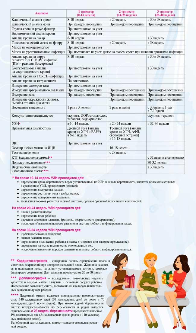 Календарь анализов во время беременности по триместрам
