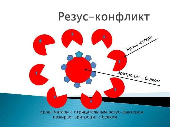 Механизм резус-конфликта
