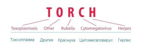 Расшифровка аббревиатуры TORCH