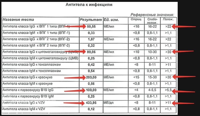 Бланк с результатами антител к инфекциям
