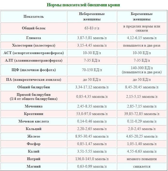 Нормы биохимического анализа крови у беременных: таблица