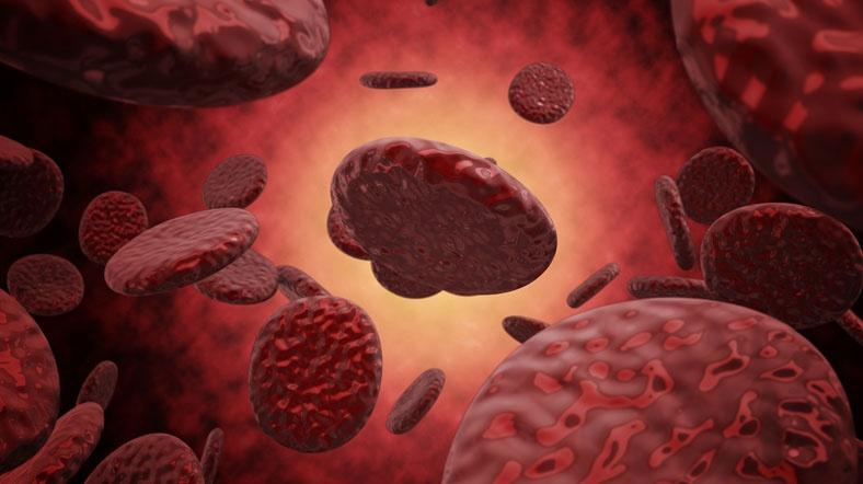 Гемолиз эритроцитов