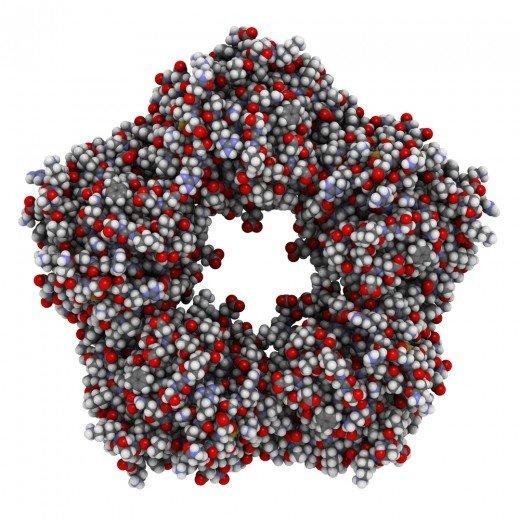 Молекула с-реактивного белка
