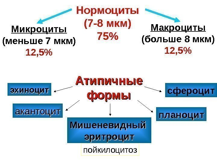 Формы эритроцитов