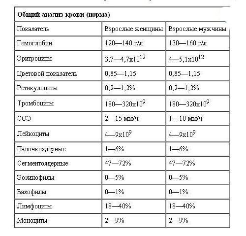 Таблица с нормами ОАК у взрослых