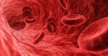Таблетки для повышения гемоглобина в крови
