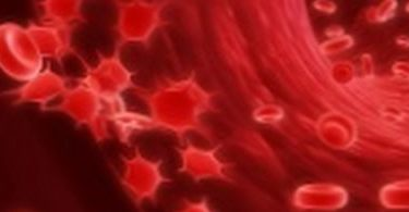 гемоглобин у беременных